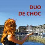 Roman Duo de choc auteure Lyvia Palay disponible sur Amazon